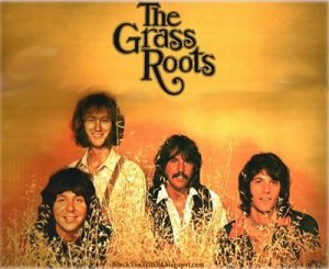 the-grass-roots